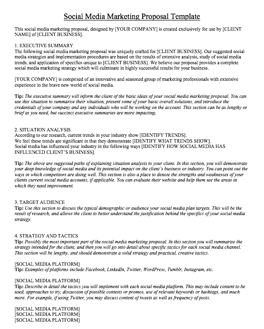 social media marketing proposal doc, social media marketing proposal template